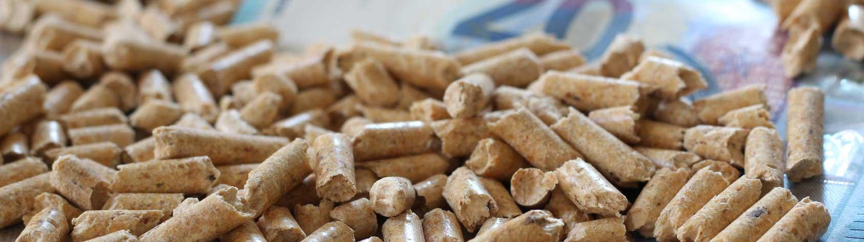 Pellets Preise: Mit Biomasse langfristig günstig heizen